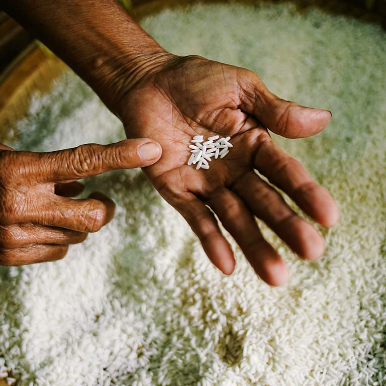 A finger points to rice grains in a hand.
